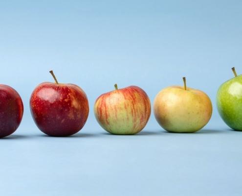 φρούτα φθινοπώρου, μήλο, αχλάδι, δαμάσκηνο, ρόδι